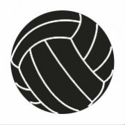 Balon Voleibol