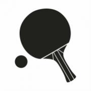 Raquetas y Pelotas de Ping Pong